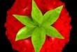 Smultron Crack Full Version With Keygen Free Download